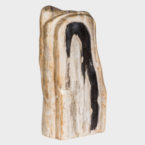 Petrified Wood Natural Statue