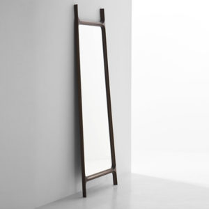 Ladder-Mirror