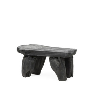 COFFEE TABLE ORGANIC - TEAK- BLACK