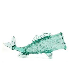 Jar Fish - Lang